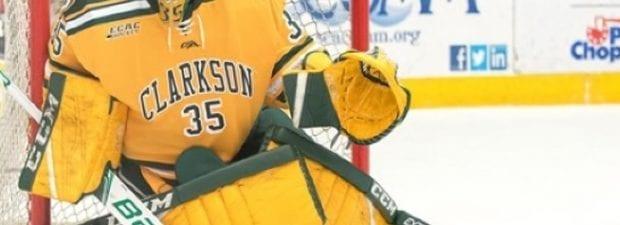 Shea Tiley Clarkson Gold Jersey