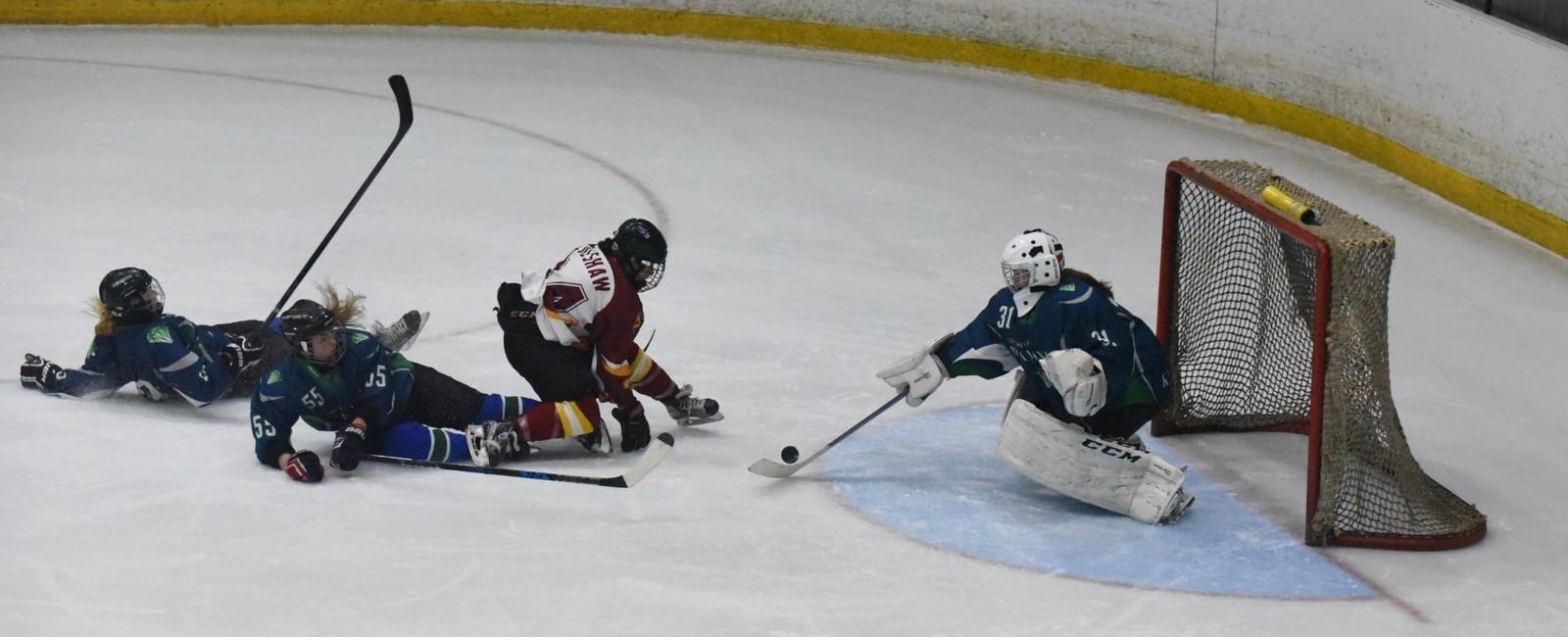 Homepage Women S Hockey Life