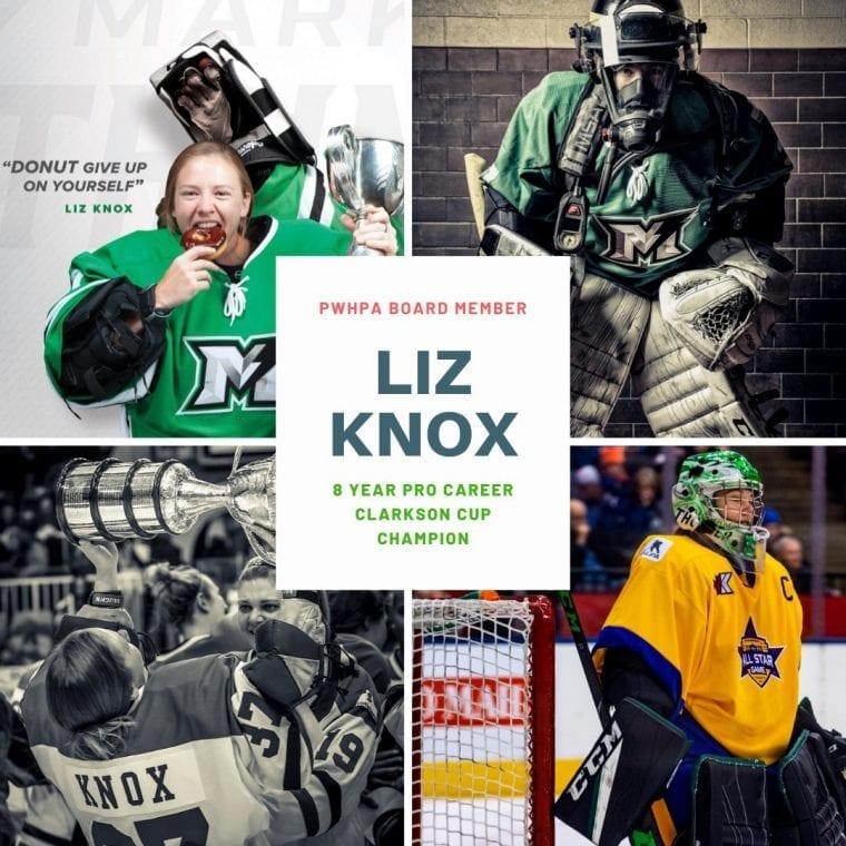 Liz Knox - The Dream Gap